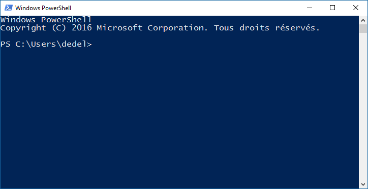 Powershell console